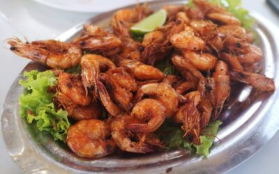 Brazilian garlic shrimps